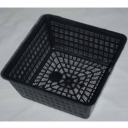 Square Aquatic Planting Basket 20cm / 2.5 litre