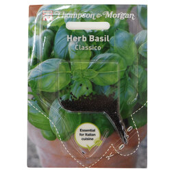 Basil 'Classico' (Sow Clear)