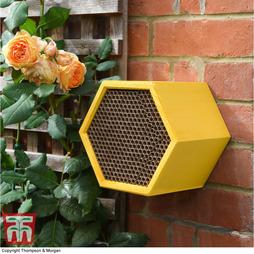 Honeycomb Bee House - Gift