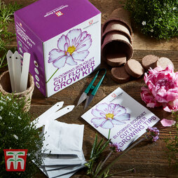 Blooming Bouquet Cut Flower Growing Kit