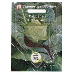Cabbage 'Durham Early' (Sow Clear)