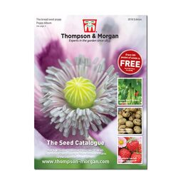Thompson & Morgan Seed Catalogue