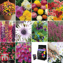 Customer Favourites Garden Collection