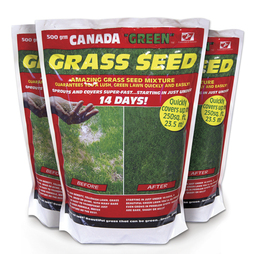 Canada Green Grass Seed 1Kg
