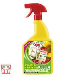 Greenfly & Blackfly Bug Killer