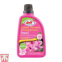 Doff Ericaceous Feed (Azalea, Camellia & Rhododendron)