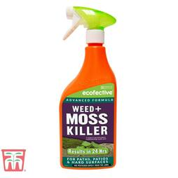 ecofective Weed & Moss Killer Ready To Use