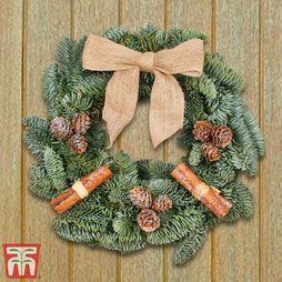Fresh Frosted Woodland Wreath - Gift