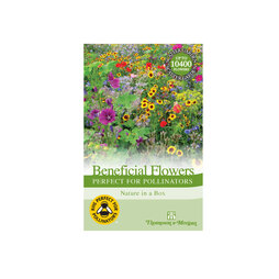 Flower Garden 'Perfect for Pollinators'
