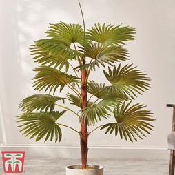 Fan Palm (Faux Plant) - Gift