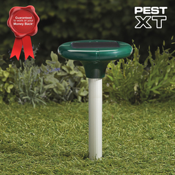 Pest XT Solar Powered Mole Repeller Six Pack
