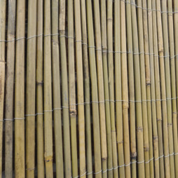 Bamboo Cane Screen Roll 2X4M