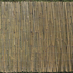 Bamboo Cane Screen Roll 1.5X4M