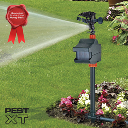 Pest XT JET SPRAY CAT REPELLER