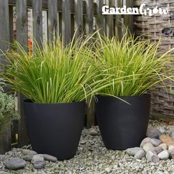 Garden Grow Set of 2 Self Watering Plant Pots ? Medium