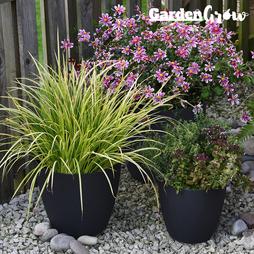 Garden Grow Set of 3 Self Watering Plant Pots