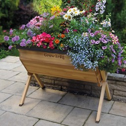Grow Trug® by BVG Group Ltd Wooden Planter Medium includes £20 worth of FREE seeds