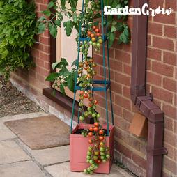 Garden Grow Self Watering 4 Tier Tomato Tower