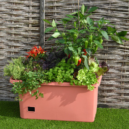 Garden Grow Self Watering Mobile Vegetable Planter