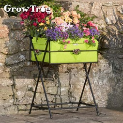 Lime Grow Trug® by BVG Group Ltd Tuscan Planter including £20 of veg seed