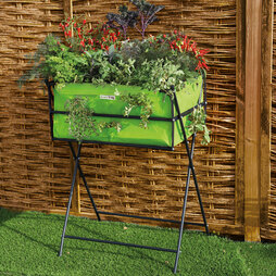 Lime Grow Trug Tuscan Planter + £10 Free Seed