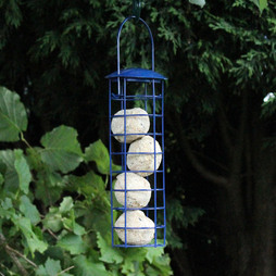 Kingfisher Blue Powder Coated Suet Ball Feeder