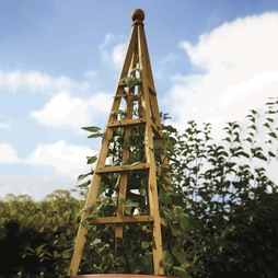 Wooden Obelisk 1.9m Tan