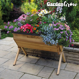 Garden Grow Raised Medium Wooden Planter with £20 worth of Veg Seed