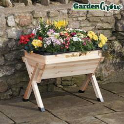 Medium Wooden Planter with £20 worth of veg seed