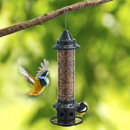 Squirrel Buster Plus Bird Feeder 3 Litres