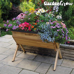 Garden Grow Raised Large Wooden Planter with £20 worth of Veg Seed