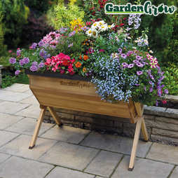 Garden Grow Raised Medium Wooden Planter with £20 worth of Veg Seed