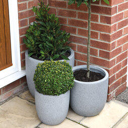 3Pack of Granito Egg Planters