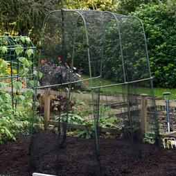 Garden Gear Walkin Crop Cage 1.8 x 1.8m