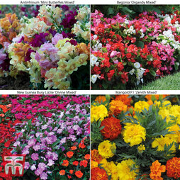Garden Ready Bedding Collection