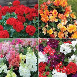 Garden Ready Sensational Saver Collection