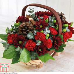 Feeling Festive Flower Basket - Gift