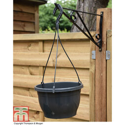 Hanging Basket with Hanger