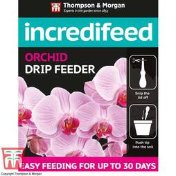IncrediFeed Orchid Drip Feeder