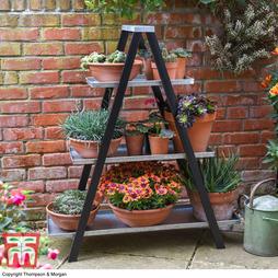 Vintage Ladder A-Frame Plantstand - Gift