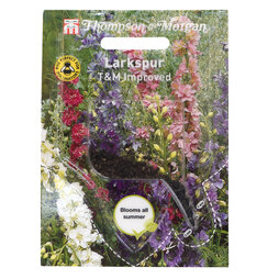 Larkspur 'T&M Improved' (Sow Clear)