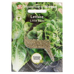 Lettuce 'Little Gem' (Sow Clear)
