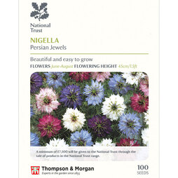 Nigella damascena 'Persian Jewels' (National Trust)