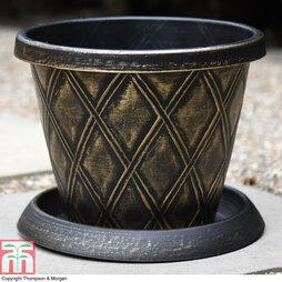 Stylish Plant Pot