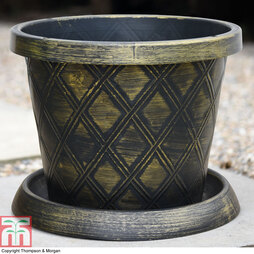 Black & Gold Patio Pot