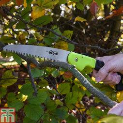 Pruning Saw