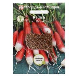 Radish 'French Breakfast 3' (Sow Clear)