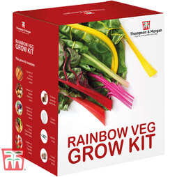 Rainbow Vegetable Growing Kit - Gift