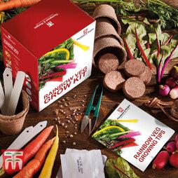 Rainbow Vegetable Growing Kit - Gift