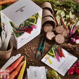 Rainbow Vegetable Growing Kit